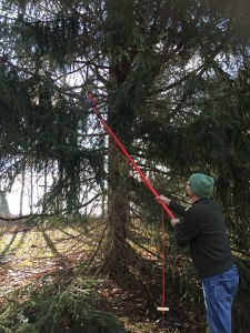 """My friend Jason helping me prune branches that will turn into my """"tree"""""""
