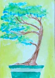 Watercolor Bonsai tree (Circa 2006)