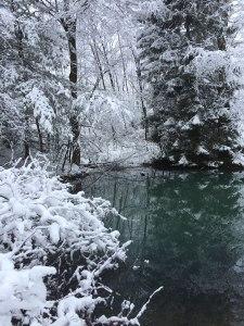 Snowfall at our homestead