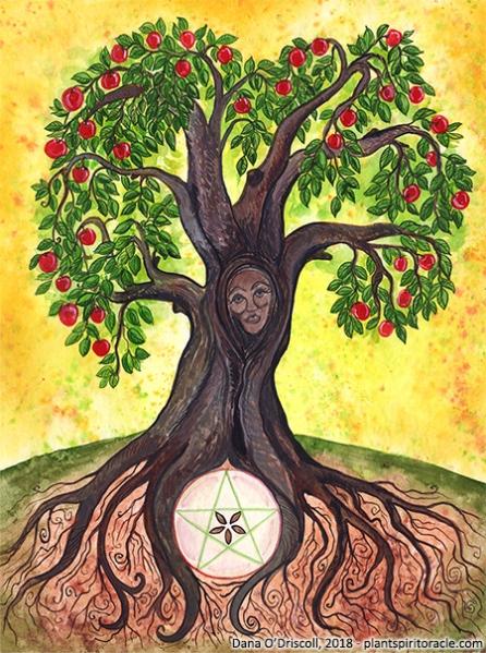 Spirit of the Apple