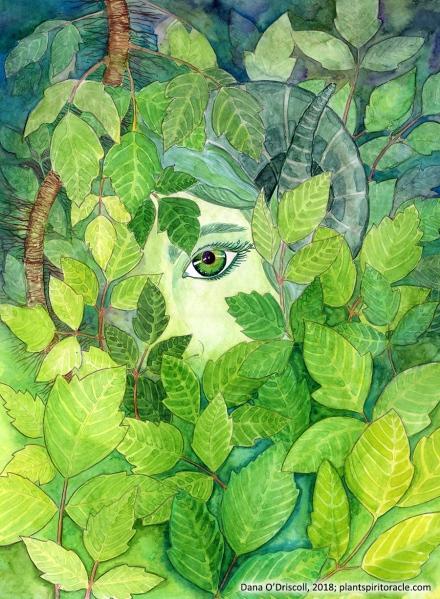 Spirit of Poison Ivy