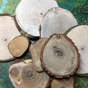 Cut rounds of different sizes and woods.